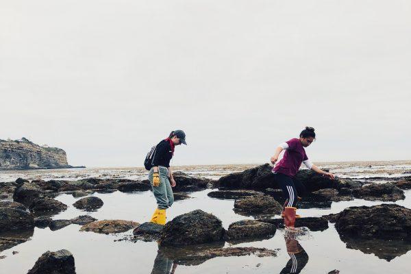 Exploring tidepools at a 5:30am low tide with Mackenzie Kawahara.